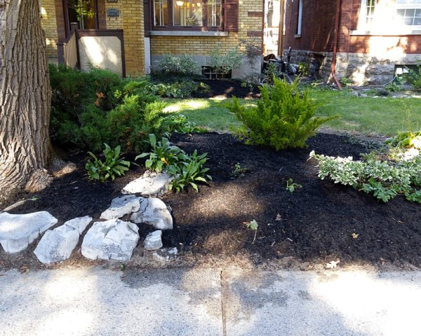 Low maintenance garden design xeriscaping Glebe Ottawa