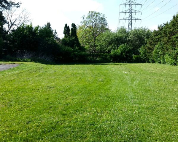 Lawn care grass moving in Nepean Ottawa