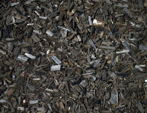 The Benefits of Mulch
